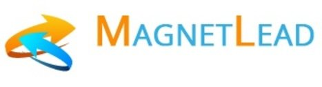 Magnet Lead