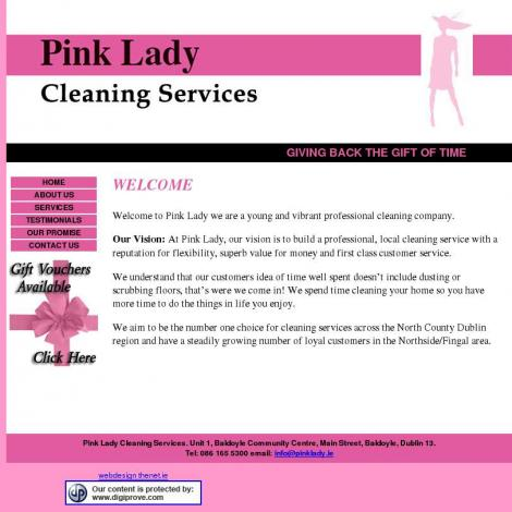 Cleaning lady dublin